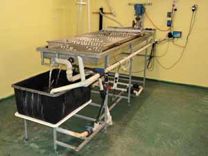 One of three egg incubators in operation at AquaVerde
